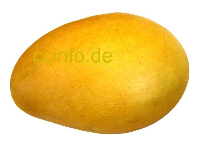 mango mangifera indica anzucht pflege und kultur. Black Bedroom Furniture Sets. Home Design Ideas